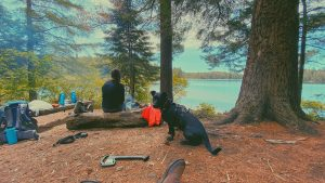 Campsite at Maple Leaf Lake on Western Uplands Backpacking Trail